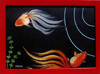 金魚 : チョークアート 和み